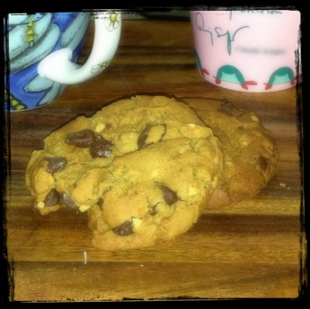 nibbled_cookies