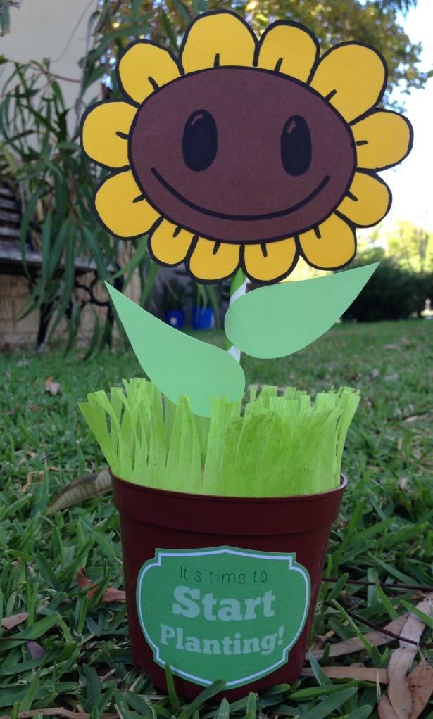 sunflower w label