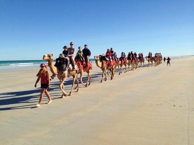 Riding the red camels on Cable Beach, Broome